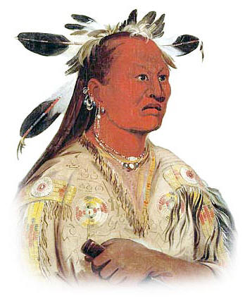 Arikara Tribe: Picture of Stan-au-pat (Chief Bloody Hand).