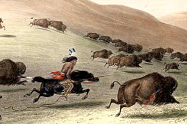 Buffalo Hunt using a lance as a hunting weapon