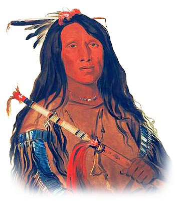Picture of a Cheyenne