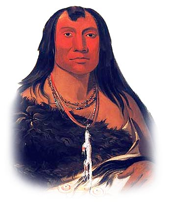 Picture of a Crow Indian