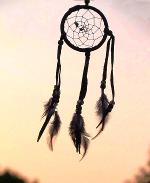 Iroquois Dream Catchers Dream Catcher Native Indian Tribes for kids 32