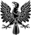 Hawk Symbol