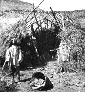 Great Basin Native Indians: Paiute Grass House