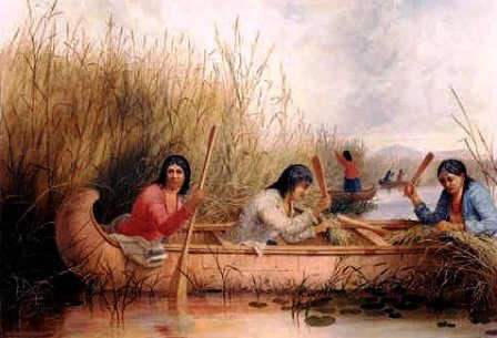 Paiute Tribe Facts Clothes Food And History