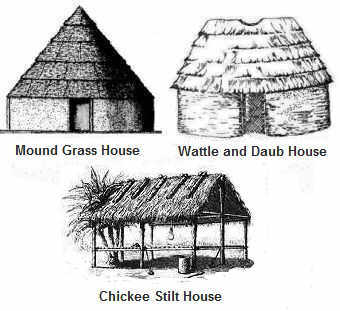 Mound Grass, Wattle and Duab, Chickee House
