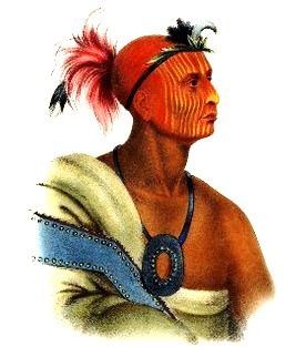 Tuko-see-mathla, Seminole Chief