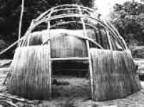 Dome Shaped Wigwam